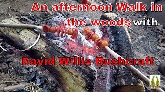 An afternoon walk in the woods with David Willis Bushcraft