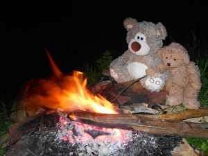 Teddy bear at camp