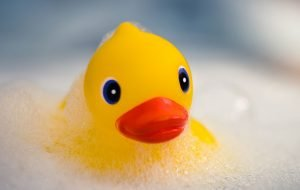 rubber duck in bath