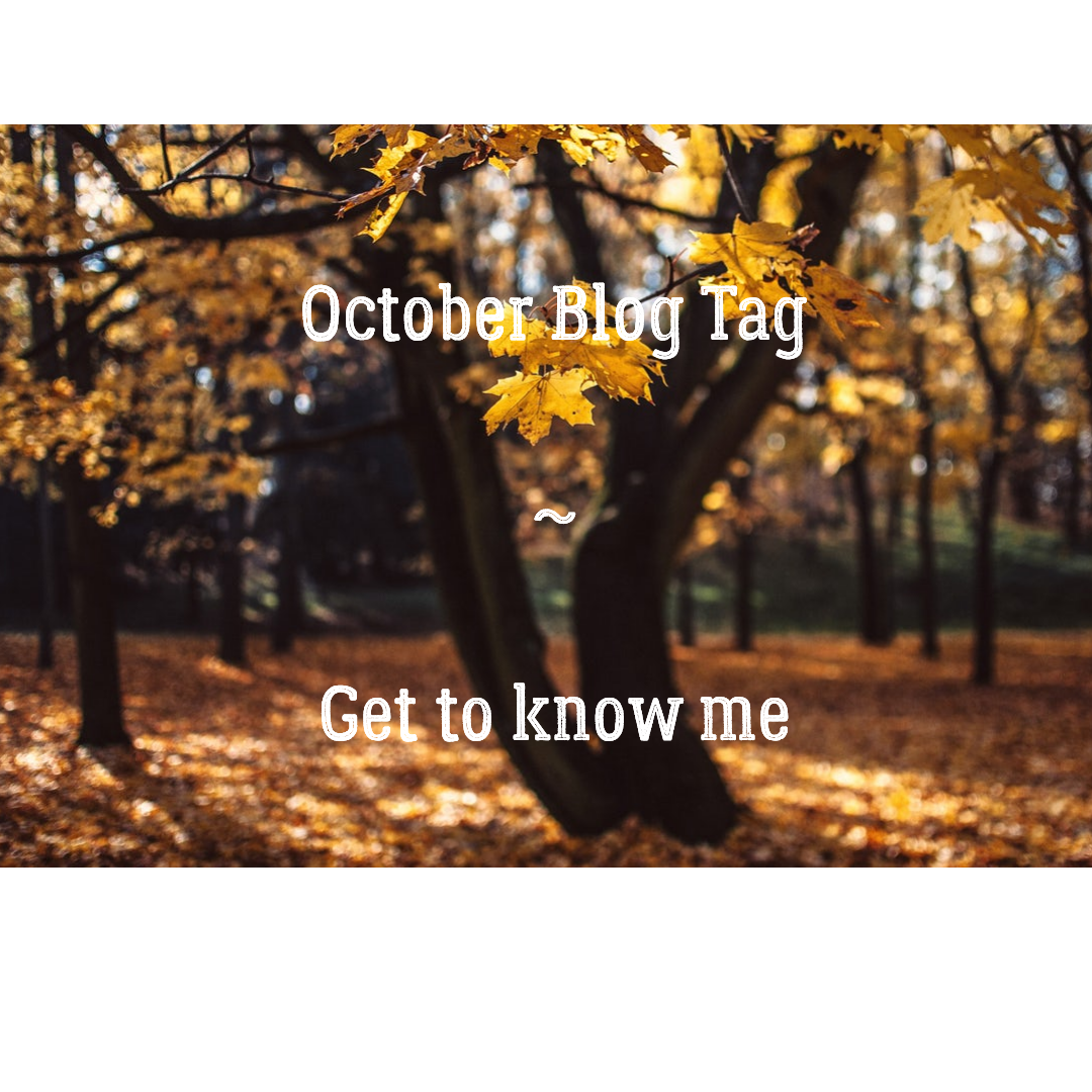 October  Blog Tag- Get to know me