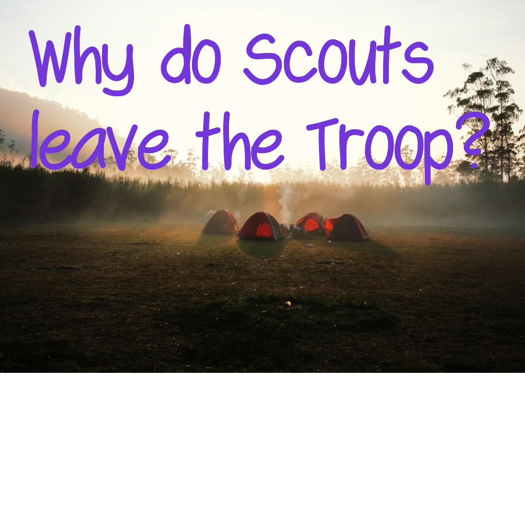 Why do scouts leave the Troop ?