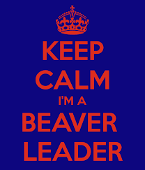 16 things you only know if you're a Beaver Leader