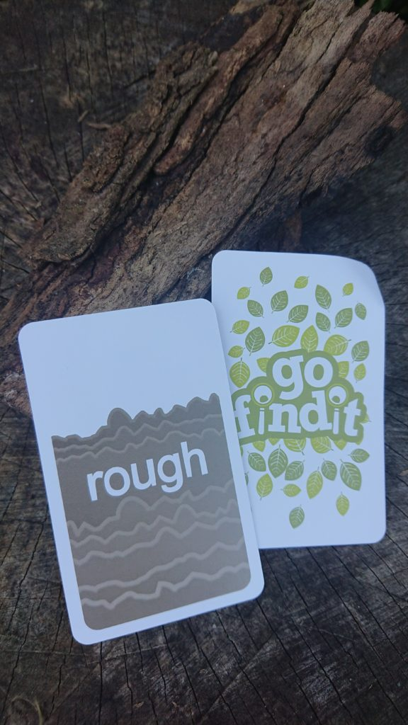 Go find it game card_Rough