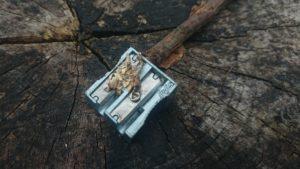 Twig in a metal pencil sharpener