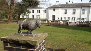 Buffalo state at Gilwell Park