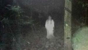 Girl ghost in forest
